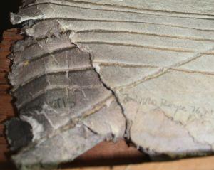 08-57 Siena, detail BT 4